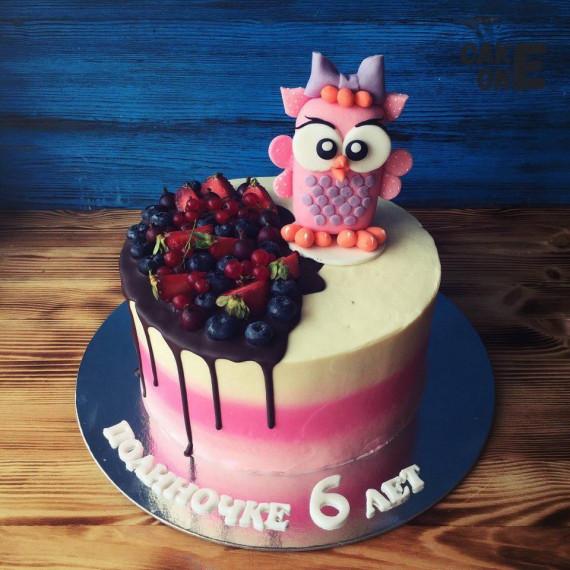 Трехцветный торт с совой